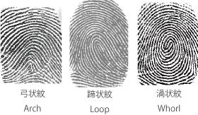 指紋認証技術紹介